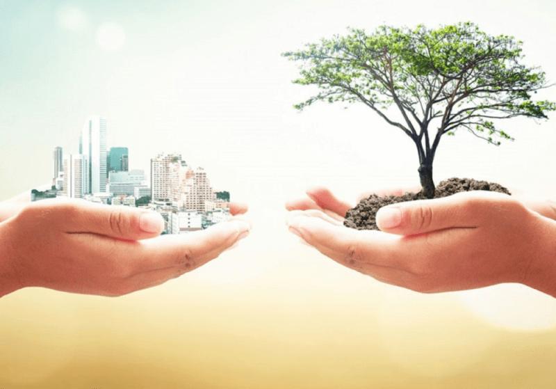 Sustentabilidade empresarial: 7 práticas certeiras de empresas sustentáveis
